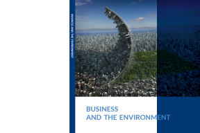 business and environment